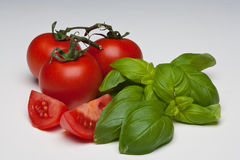 Tomato and Basil herb Stock Photography