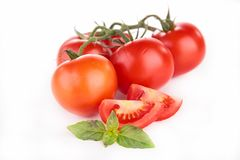 Tomato and basil Royalty Free Stock Photography