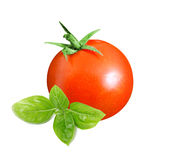 Tomato and basil leave Stock Photo