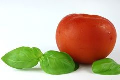 Tomato and Basil Leaves Royalty Free Stock Photo