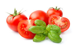 Tomato and basil Royalty Free Stock Photos