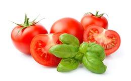 Tomato and basil Royalty Free Stock Photos
