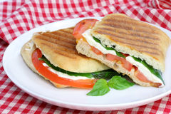 Tomato, Basil and Mozzarella Panini Stock Image