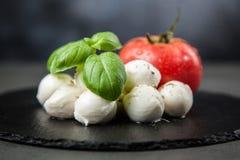 Tomato basil and mozzarella Royalty Free Stock Photography
