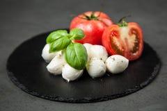 Tomato basil and mozzarella Royalty Free Stock Photo