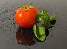 Tomato with basilic leaf Stock Photos