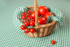 Tomato basket Royalty Free Stock Photo