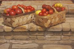 Tomato Royalty Free Stock Photos