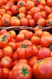 Tomato baskets Stock Image