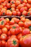 Tomato baskets Stock Image