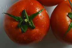 Tomato. Beautiful red tomatoes hanging droplets looks very appetite Stock Photo