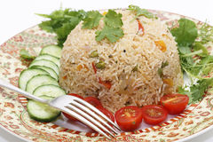 Tomato biryani and fork Royalty Free Stock Photography