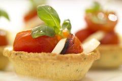 Tomato and bocconcini. A fresh tomato and bocconcini delight Stock Photos