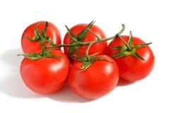 Tomato branch close-up on white stock photos