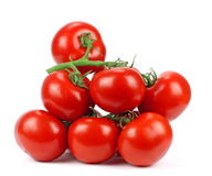 Tomato branch. Royalty Free Stock Images