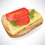 Tomato on bread slice. Tomato on slice of bread vector illustration