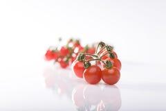 Tomato bunch Stock Image