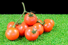 Tomato bunch on grass Stock Images
