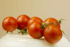 Tomato Royalty Free Stock Photo