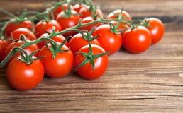 Tomato bush on wood Royalty Free Stock Image