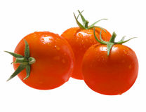 Tomato-C Royalty Free Stock Image