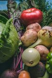 Tomato, cabbage, onion, potato, pepper, garlic, carrot and beetroot. Vegetables in a basket on a blue background. Copy space. Healthy food, agriculture royalty free stock photography