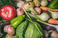 Tomato, cabbage, onion, potato, pepper, garlic, carrot and beetroot. Vegetables in a basket on a blue background. Copy space. Healthy food, agriculture stock image