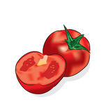 Tomato. Carrots is a root vegetable, usually orange in colour, widely used in many cuisines Royalty Free Stock Photo