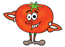 Tomato cartoon character Royalty Free Stock Images