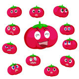 Tomato cartoon with many expressions Stock Images