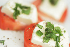 Tomato and cheese royalty free stock photography