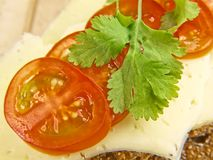 Tomato, cheese and parsley Stock Photography