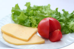 Tomato, cheese, salad. Tomato, cheese and salad on a white plate Stock Images