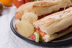 Tomato & cheese sandwich. Tomato and cheese sandwich with potato chips Royalty Free Stock Image