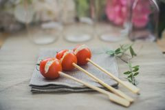 Tomato and cheese skewers Royalty Free Stock Photo