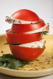 Tomato and cheese. Tomatoes and cheese and parsley and dill Stock Images