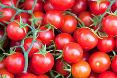 Tomato cherry. Fresh ripe tomato cherry close up Royalty Free Stock Photos