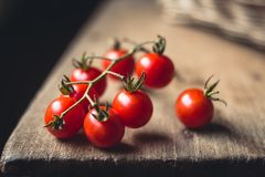 Tomato cherry in basket Tomato in hand South Asia. Nature light royalty free stock photos