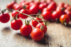 Tomato cherry in basket Tomato in hand South Asia. Nature light royalty free stock photo