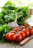 Tomato cherry , garlic, lettuce and oil Royalty Free Stock Photography