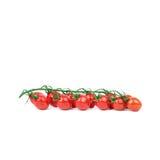 Tomato cherry Royalty Free Stock Photography