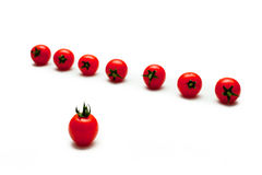 Tomato cherry red Royalty Free Stock Photography