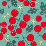 Tomato cherry seamless pattern. Ripe tomatoes with leaves and flowers on shabby background. Original simple flat illustration. Shabby style royalty free illustration