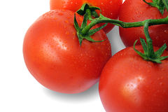 Tomato (with Clipping Path). Tomato and drops of water (with Clipping Path). A juicy vine ripened tomato is ready for your design. The file includes a clipping royalty free stock images