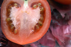 Tomato close up. Tomato half macro on bed of red onion skins Stock Photography
