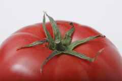 Tomato of a close-up Royalty Free Stock Images
