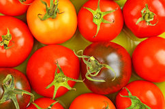 Tomato, close up Royalty Free Stock Images