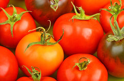 Tomato, close up Stock Photography