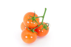 Tomato cluster. Truss tomatoes in cluster isolated on white Royalty Free Stock Images