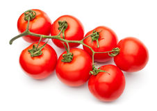 Tomato cluster Stock Image
